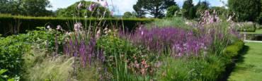 La gestion différenciée dans les jardins